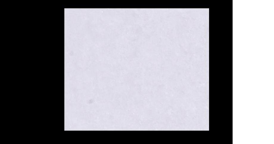 suzuko white tile